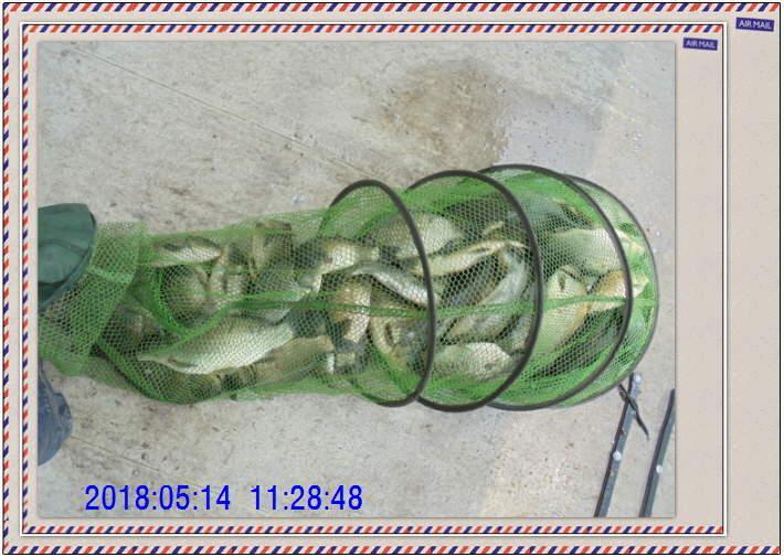 꾸미기_DSC02481.JPG
