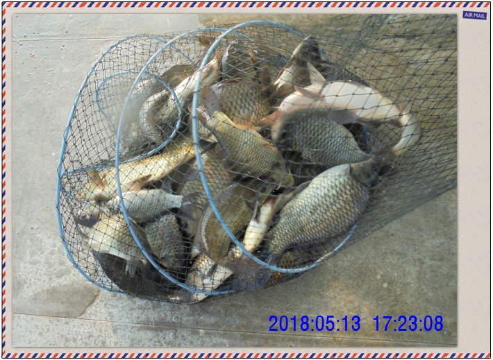 꾸미기_DSC02463.JPG